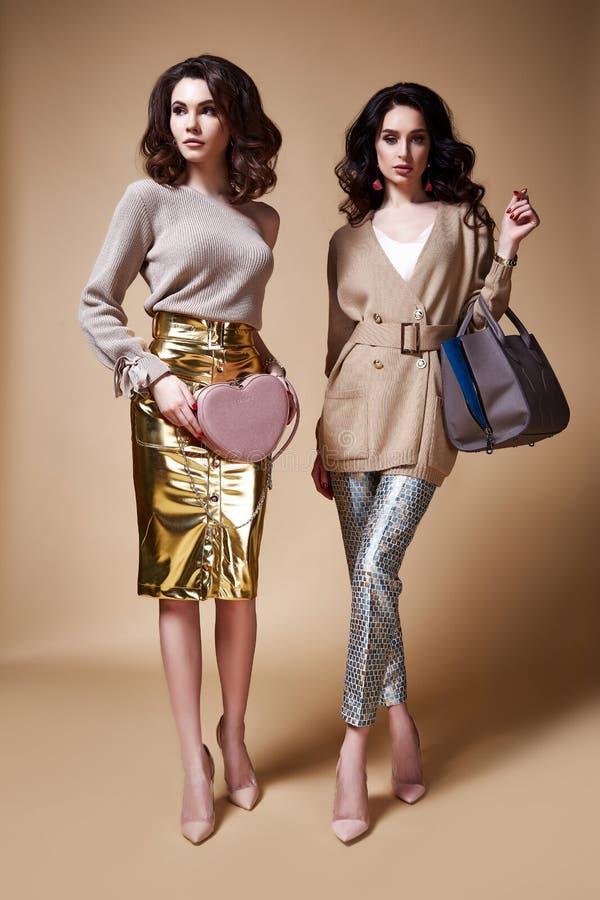 Long brun bouclé du charme deux femme sexy de mannequin de belle images libres de droits