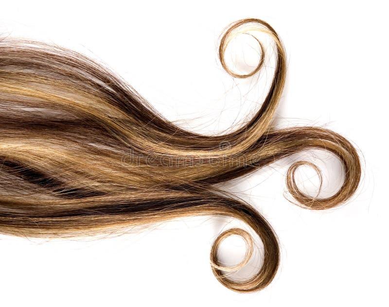 Long cheveu photo stock