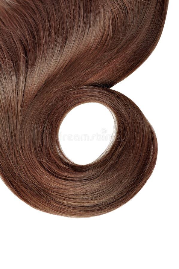 Long cheveu brun photographie stock libre de droits