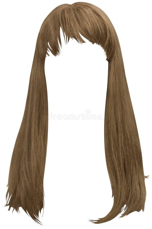 Long cheveu de Brown photo libre de droits
