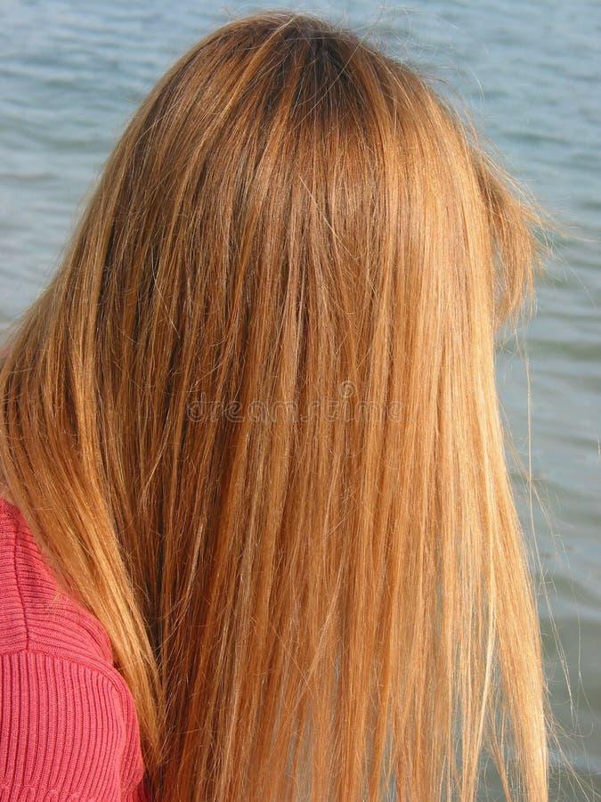 Long cheveu sain images libres de droits