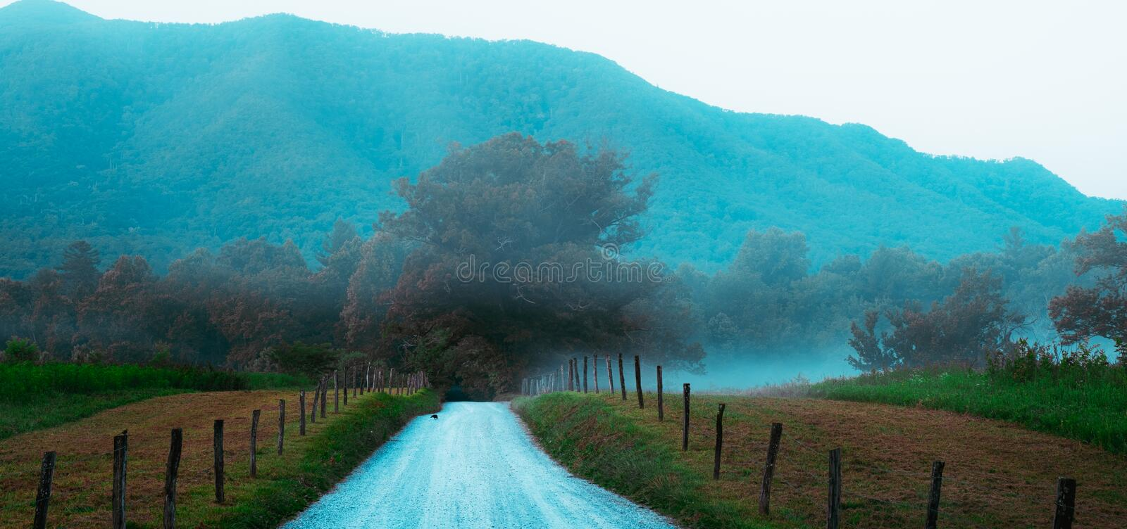 Long country road in Cades Cove royalty free stock image