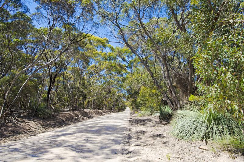 Path Kangaroo Island, typical gravel road, South Australia stock photo