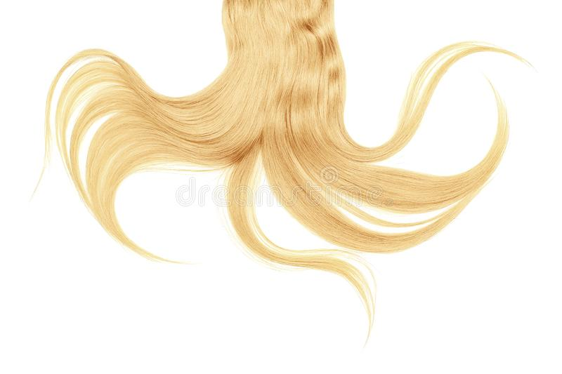 Long disheveled blond hair, isolated on white background. Natural healthy hair isolated on white background. Detailed clipart for your collages and illustrations royalty free stock photo