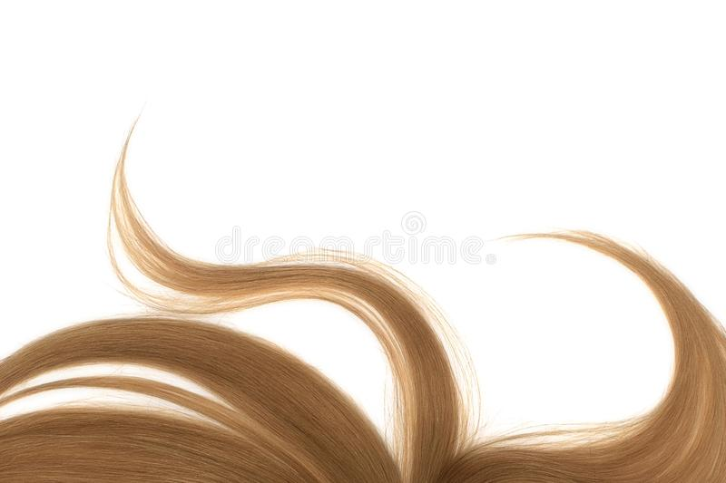 Long disheveled brown hair, isolated on white background. Natural healthy hair isolated on white background. Detailed clipart for your collages and illustrations royalty free stock photo