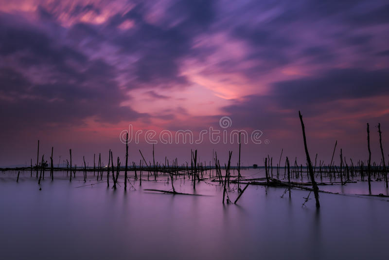 Long exposure on the beach with the oyster farms. After sunset royalty free stock image