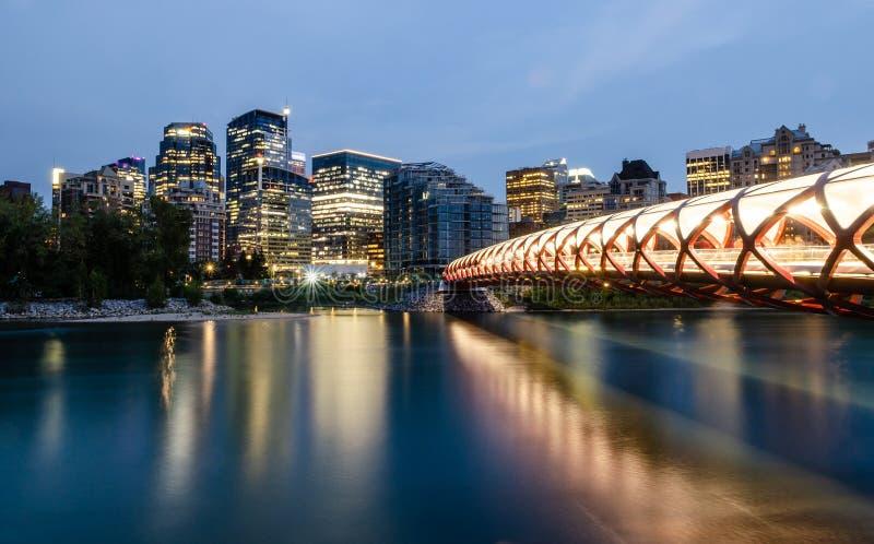 Calgary Skyline at night royalty free stock images