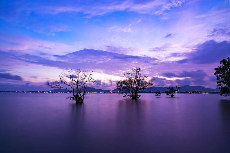 Long exposure image of Dramatic sky seascape with silhouette trees in sunset scenery background stock photography