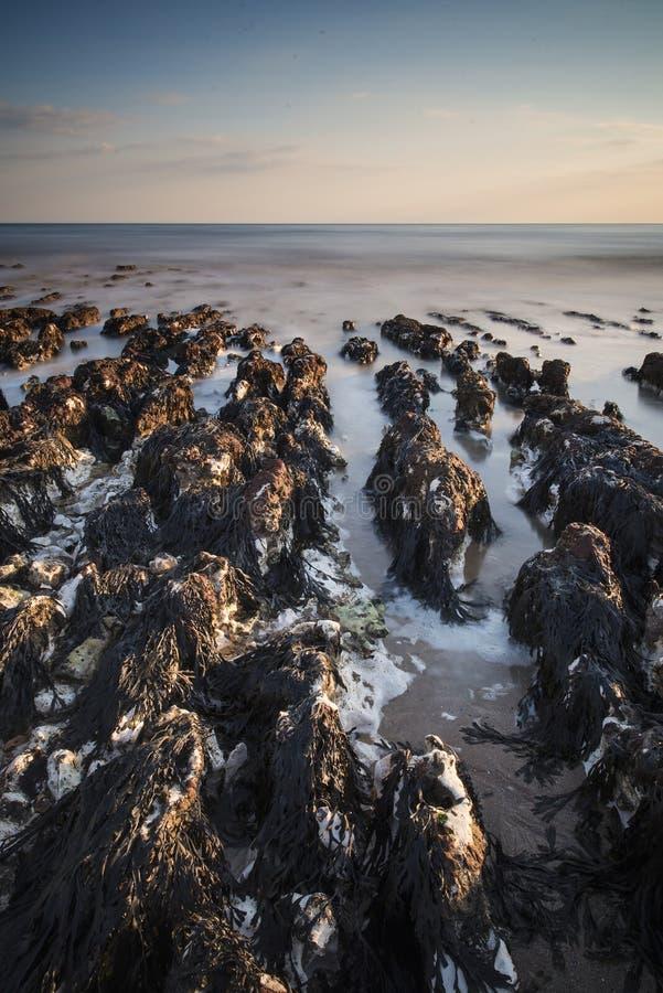 Download Long Exposure Landscape Rocky Shoreline At Sunset Stock Image - Image: 31964441