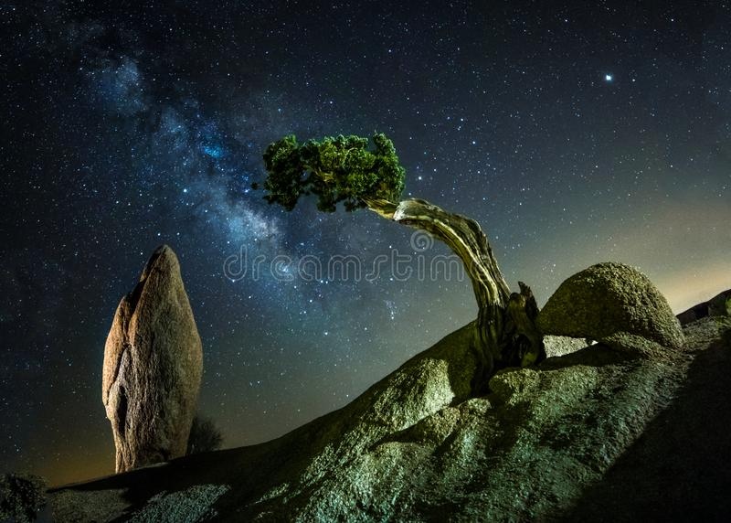 Monolith rock and Josha Tree National park stock images