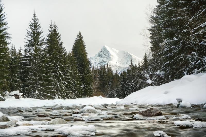 Long exposure photo - winter river, water flowing over rocks covered with snow, trees on both sides, mount Krivan peak -. Slovak symbol - in distance. Vysoke stock photography