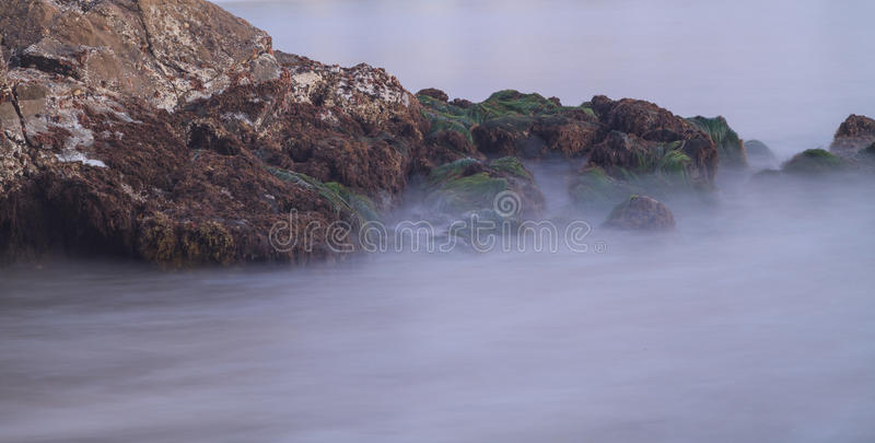 Long exposure of rocks and seaweed moss in waves royalty free stock images