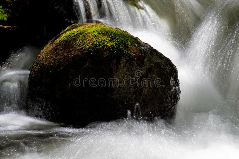 Long Exposure Water Falling In A Moss Covered Woodland Stream stock images