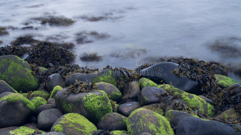 Long Exposure Water Next To Rocks & Seaweed royalty free stock photos