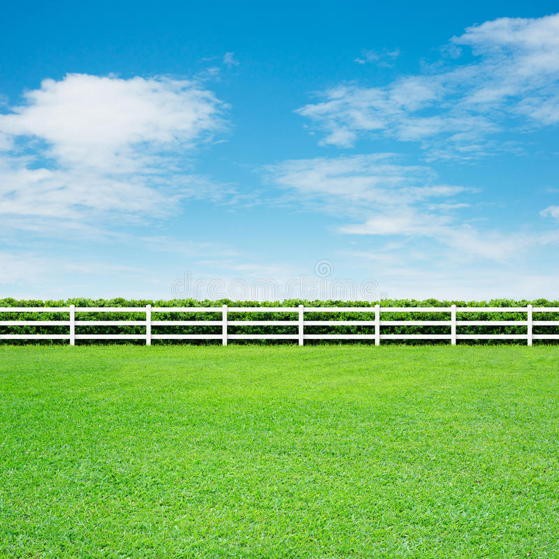 Download Long Fence And Green Grass Stock Image - Image: 30328561