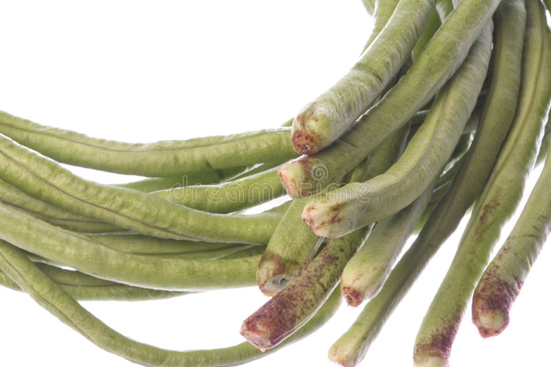 Long Green Beans Isolated stock image
