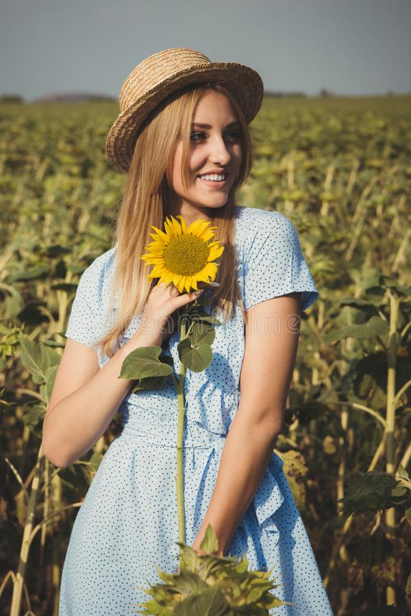 Long-haired blonde young woman in a straw hat and blue dress on a field of sunflowers stock image