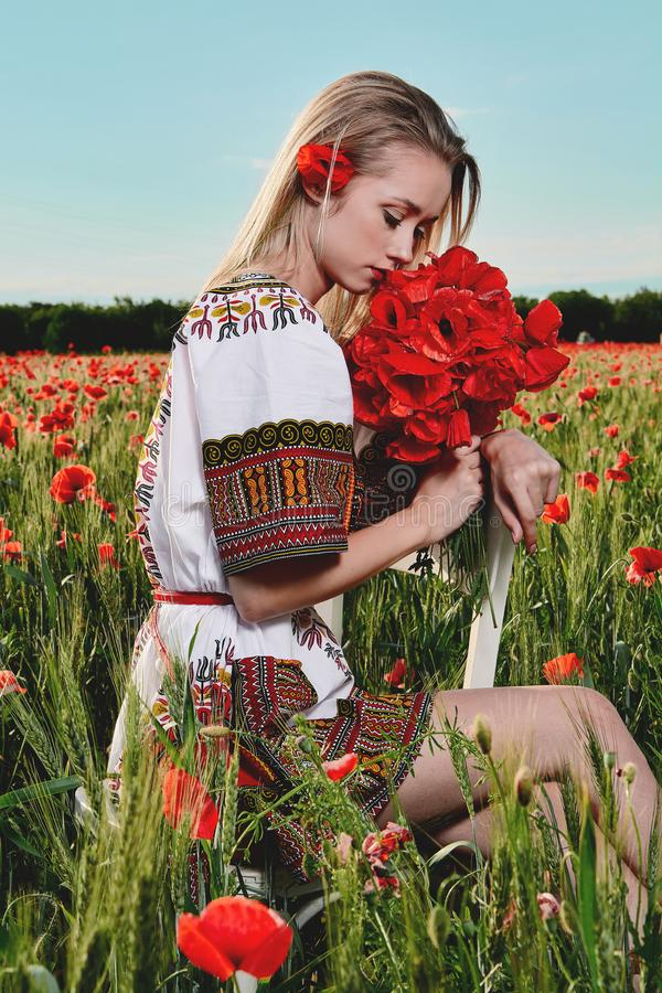 Long-haired blonde young woman in a white short dress on a field of green wheat and wild poppies stock photos