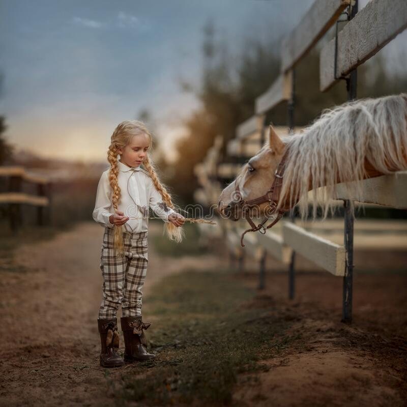 Little girl with palomino pony horse insurer day royalty free stock photo