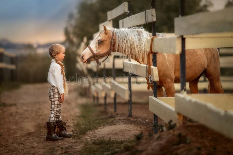Little girl with palomino pony horse insurer day stock photo
