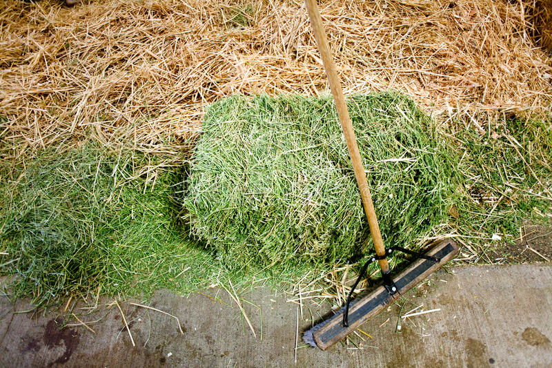 Long handled scrub brush with small square hay bale. In the barn royalty free stock images