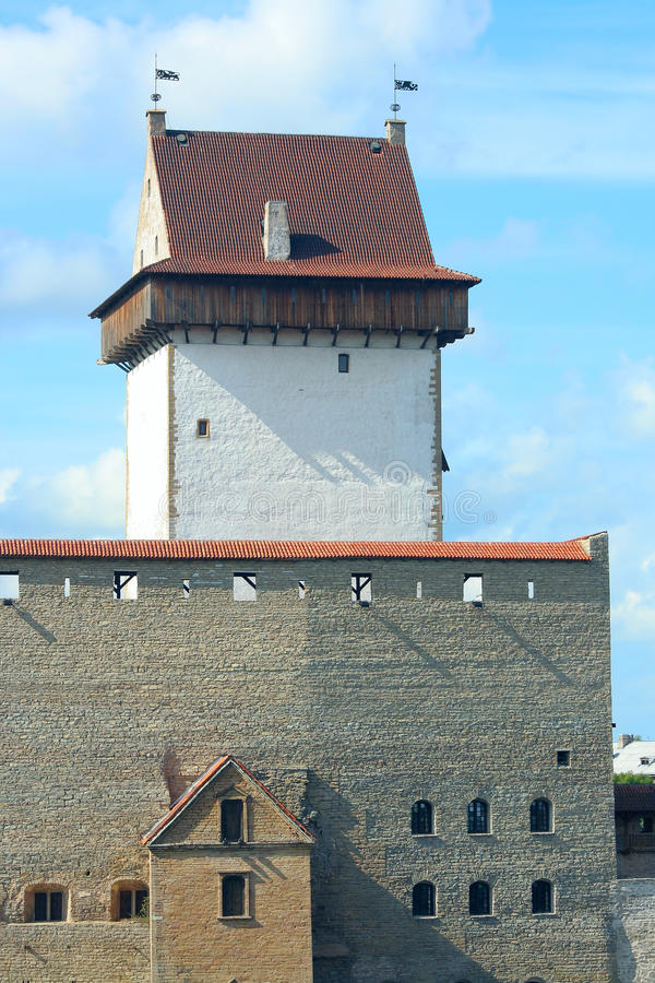 Free Long Hermann Tower In The Narva Castle Royalty Free Stock Photo - 21696915