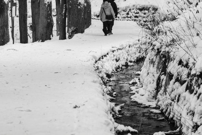 Long hiking path covered in snow with small stream running down the side royalty free stock images