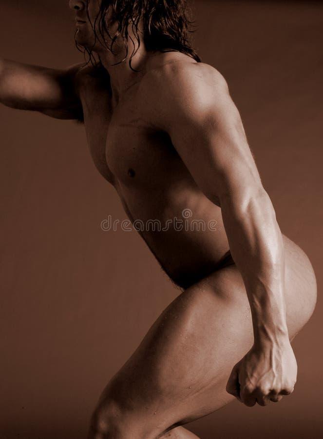 Download Long Homme De Muscle De Cheveu Photo stock - Image du type, homme: 731516