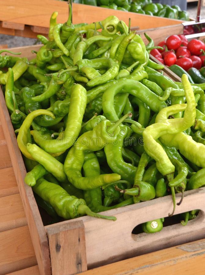 Long Hot Peppers. Fresh Italian long hot peppers for sale in the outdoor farm market royalty free stock images