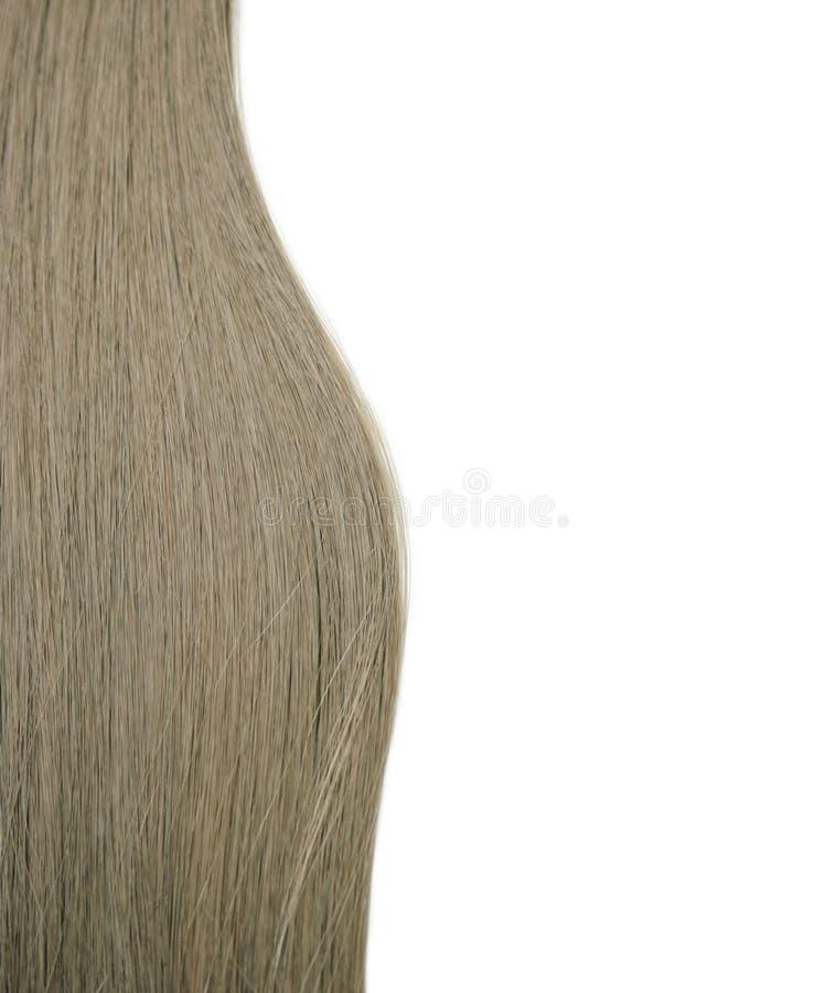 Long Human Hair Stock Photo