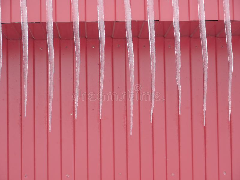 Icicles on the red wall royalty free stock image