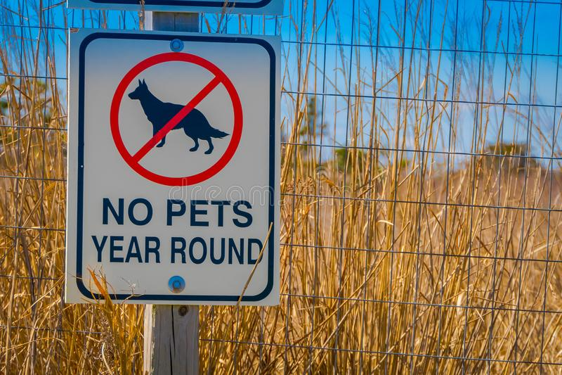 LONG ISLAND, EUA, ABRIL, 17, 2018: Ideia exterior do sinal informativo nenhuns bicycling e não animais de estimação na área na fotos de stock royalty free