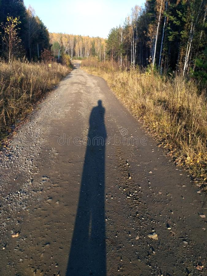 Long-long human shadow on the forest road at sunset. Long-long human shadow on the forest gravel road at sunset. Trees and yellow grass on the sides of the road stock photo