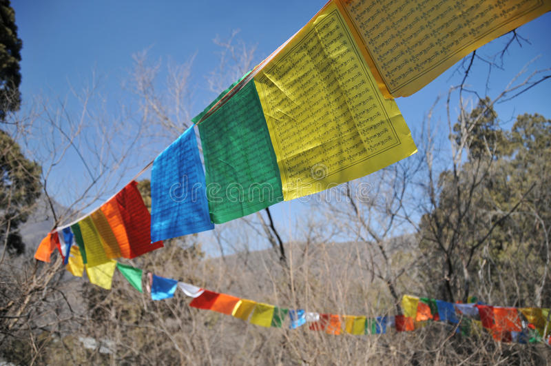 Long narrow flag in Tibet. Can be seen everywhere in Tibet linked to the Peak Pass, along the River Bank and the riverside temples, and so on around the long stock photography