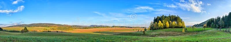 Long panorama avec peu de forêt image libre de droits