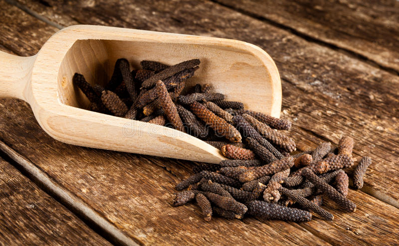 Long pepper or Piper longum. On wooden table stock image