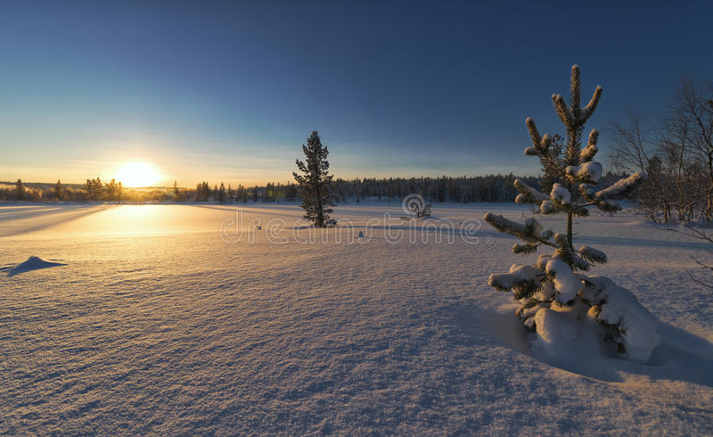 After a long polar night. First sun after polar night. Murmansk region stock image