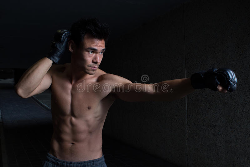 The Long Reach Punch royalty free stock image