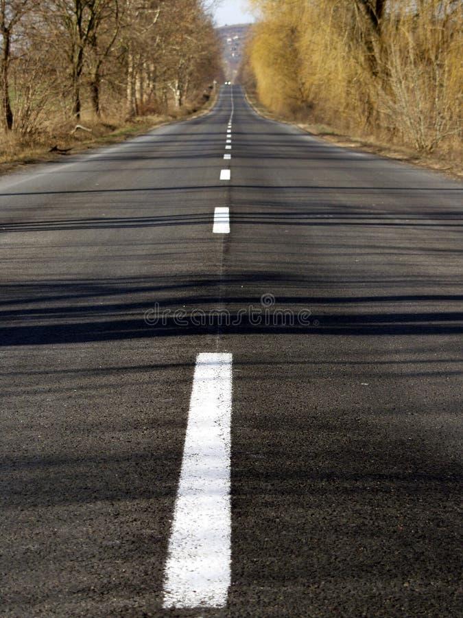 Long road royalty free stock image