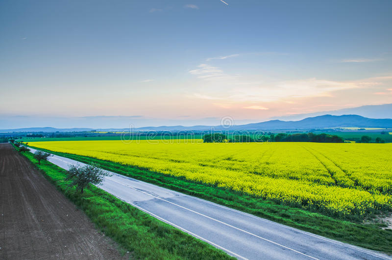 Long road to nowhere royalty free stock photos
