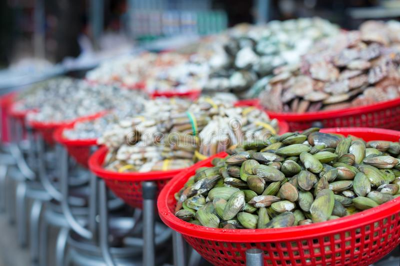 A long row of baskets full of mussels, clams, and a large assortment of shellfish stock photos