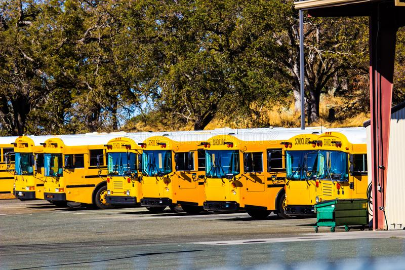 Row Of Yellow School Buses royalty free stock images
