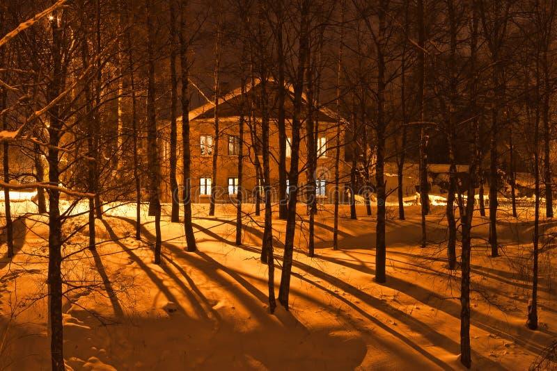 Long shades of winter night stock image