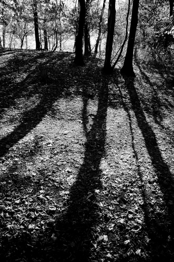 Long shadows stock image