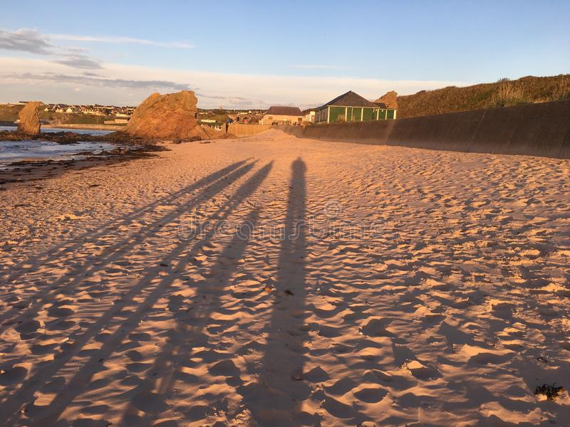Long shadows of walkers and dog on beach royalty free stock images