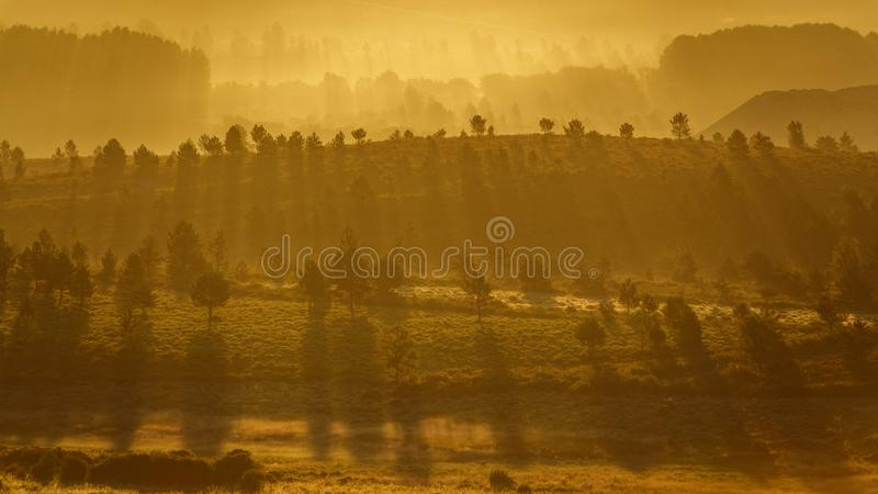 Beautiful dawn back light with trees and hills stock image