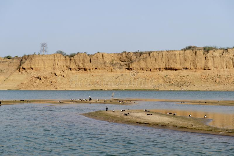 Long shot of Chambal river and birds, Rajasthan, India. stock photography