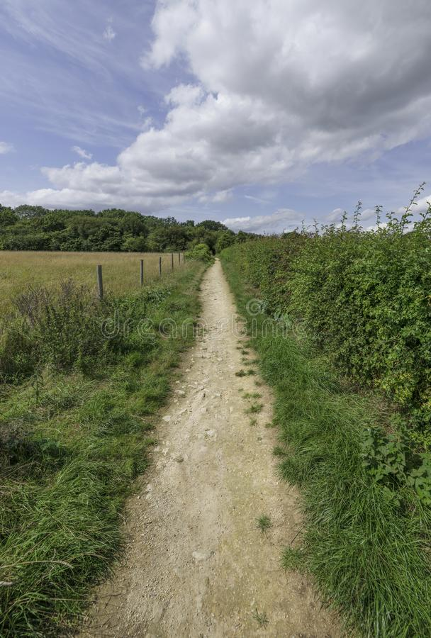Long straight country path on a summers day leading to the woods in East Anglia in England royalty free stock photos