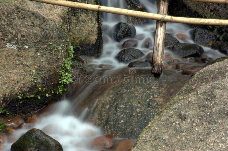 Long stream. Between the rock with bamboo stock photos