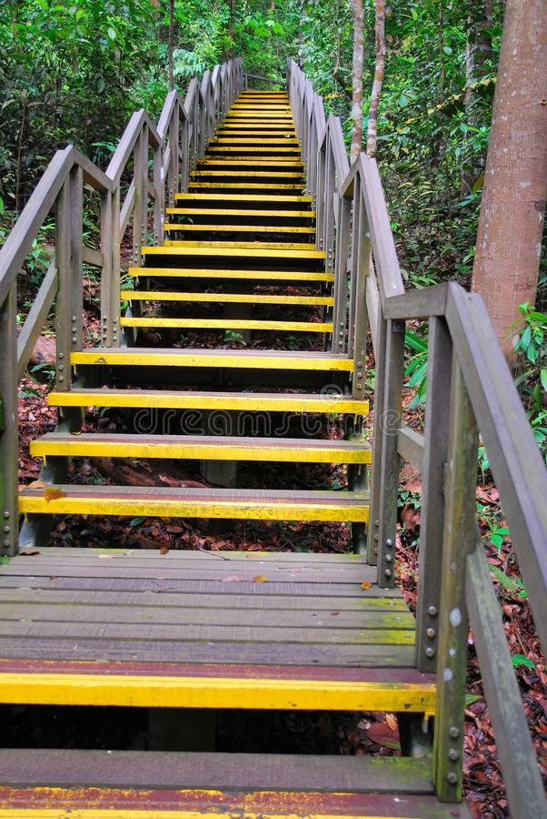 Download Long Stretch Of Stairs Leading High Up Stock Photography - Image: 11009882